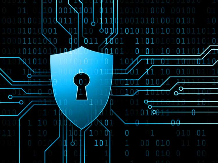 Cyber Security Ccplus Inc